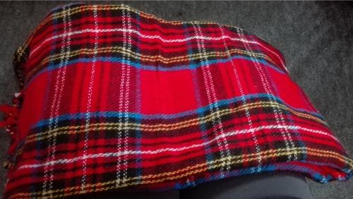 電気ひざかけ毛布